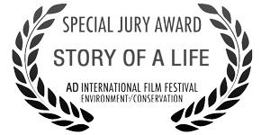 5 International Film Awards